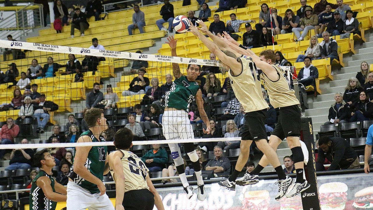 Long Beach State Rises to #2 in Latest AVCA Polls