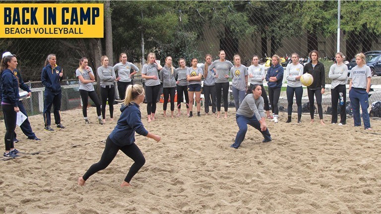 Cal Beach Volleyball To Face Eight Ranked Opponents In 2017 Season