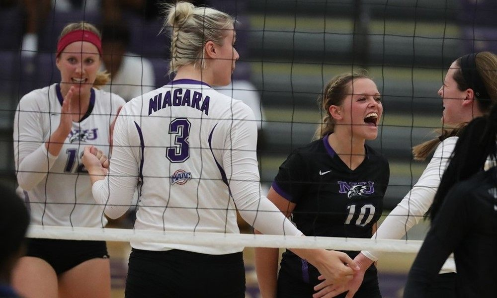Niagara Adds Cal State Fullerton Transfer Rachel Hall to 2017 Roster