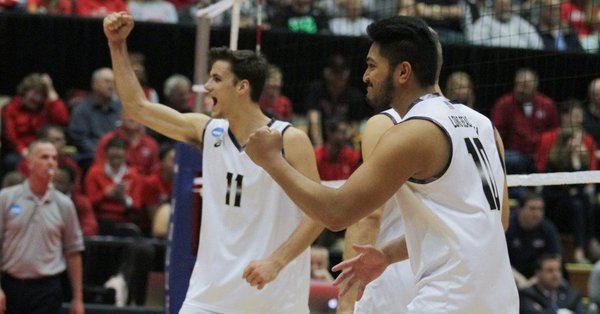 AVCA Top Five Holds Strong, Led by Long Beach State