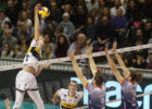 ITA: Holt and Modena Remain Unbeaten; Latina Wins